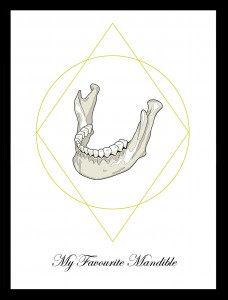 My Favourite Mandible