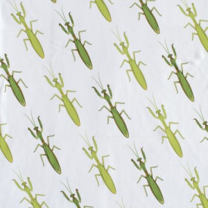 Praying Mantis Print